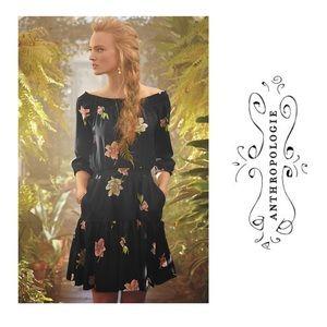 Antgropologie Lil romantic Lolanthe floral Dress L